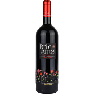 Bric Amel Langhe Nebbiolo Rosso 75cl